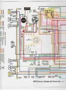 1979 Trans Am Wiring Diagram  U2013 Vivresaville Com