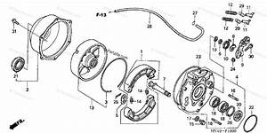 Honda Atv 2006 Oem Parts Diagram For Rear Brake    Panel