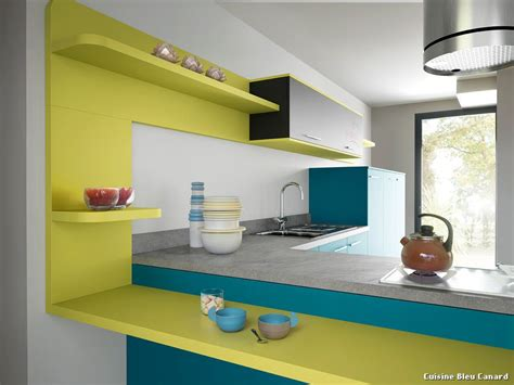 canard cuisine cuisine bleu canard with contemporain cuisine décoration