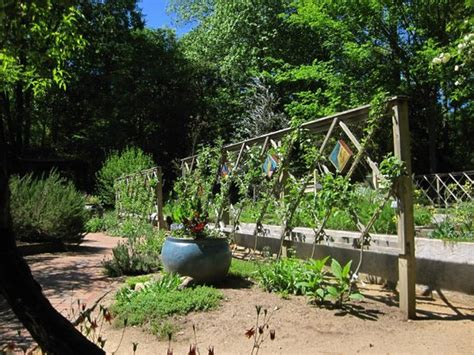 Botanical Gardens Chapel Hill by Wildflowers And Bench Near Creek Picture Of North