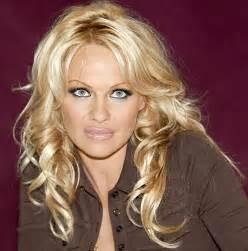 Pamela Anderson Home Improvement Image
