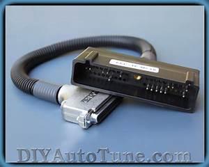 Wtb Megasquirt Ecm Wiring Harness Adapter For Megasquirt 2