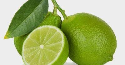 lumina fitokimia jeruk nipis citrus aurantifolia