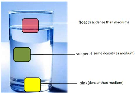 what determines whether an object will sink or float density sink float or suspend science is