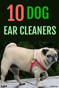 10 Dog Ear Cleaners