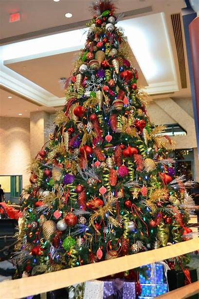 Christmas Trees Tree Purple Decorated Decorations Connecticut
