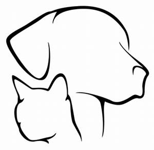 Services | Pampered Pet Sitters – Beaumont, TX