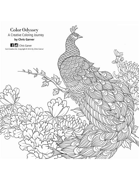 Color Odyssey: A Creative Coloring Journey Coloring Book Printables | Jo-Ann