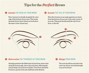 Welcome To Tonia Ebhos Blog  16 Eyebrow Diagrams That Will Explain Everything To You