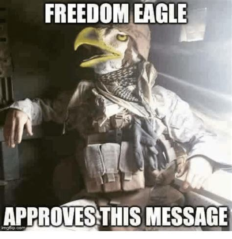 Freedom Meme - freedom eagle approves this message ghip co eagle meme on me me