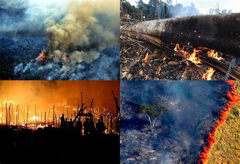 arde el pulmon del mundo   bolsonaro  le importa