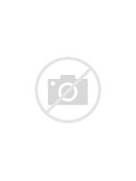 fight for Freedom - Wolves with elemental powers Sign Up -  Colorful Wolf Painting