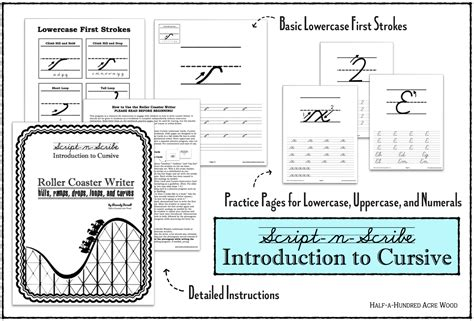 Introduction To Cursive Program The Roller Coaster Writer  Half A Hundred Acre Wood