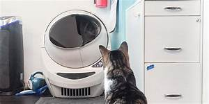 Sanada Juyushi  Top 10 Best Self Cleaning Litter Box For