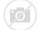 Image result for pictures of snoopy at christmas