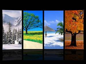 Four Seasons Wallpaper - WallpaperSafari