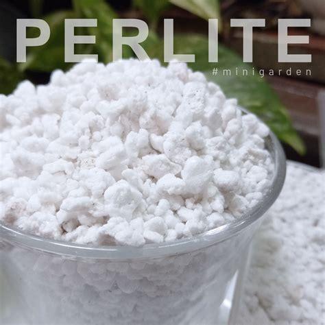 เพอร์ไลท์ Perlite ใช้ปลูกพืชไร้ดิน ผสมดินปลูกกระบองเพชร แค ...