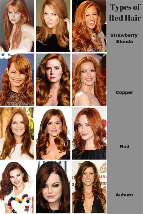 Different Type Of Hair Colors by 25 Best Ideas About Copper Hair Colors On