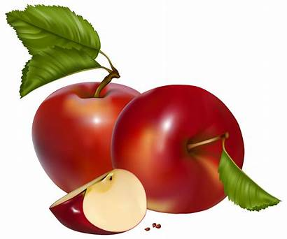 Apple Apples Clipart Transparent Rose Clip Background