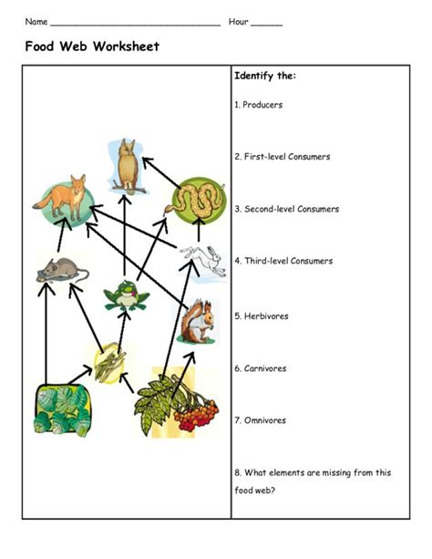 food chain and food web worksheets middle school food