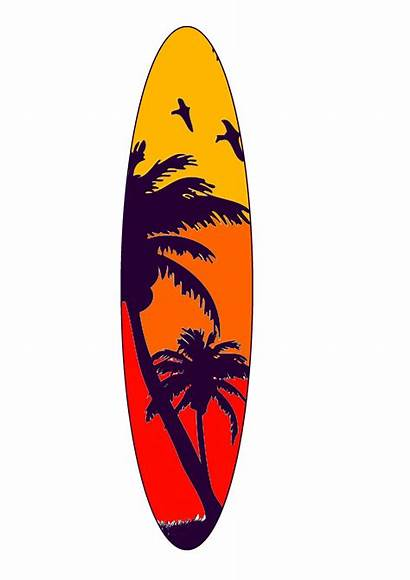 Board Surfboard Palm Surf Designs Trees Different