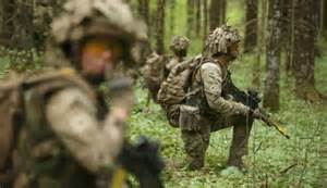 NATO Troops Baltic States