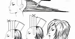 Diagram Long Layered Haircut