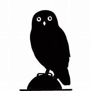 Owl Silhouette The Blue Door