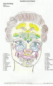 227 Best Images About Reflexologia Facial Facioterapia
