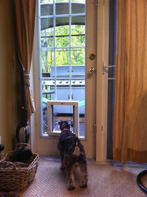 Are Dog Door For Sliding Glass Door A Good Choice For Your. Garage Door Safety Cable. Hollywood Crawford Garage Doors. Ontrack Garage Doors. Kobalt Garage Storage Cabinets. A Better Garage Door. Overhead Garage Storage Systems. Garage Design Software. Glass Double Doors