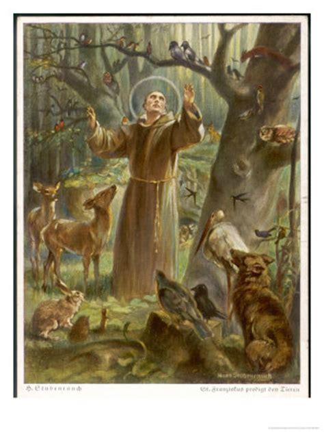 franois d assise et les animaux 4 octobre benediction et journee mondiale des animaux association animale ma vie de galgo
