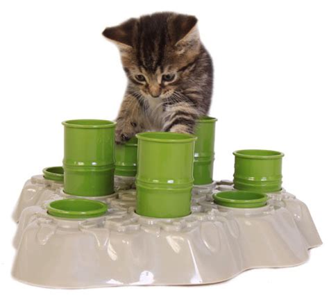 cat puzzle feeder win a stimulo interactive cat feeder from a 239 kiou catster