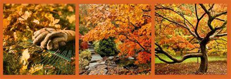 Herbst Gartenarbeit by Top Tips For Gardening This Autumn Pretty Maison