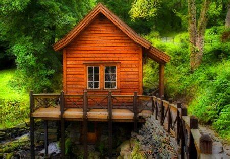 forest cabin forests nature background wallpapers