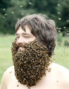 Image result for beekeeper