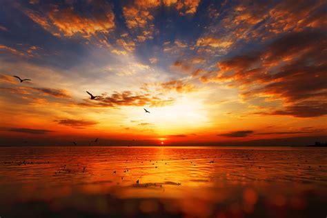 Sommer Fotospecial Fotografiere Den Perfekten