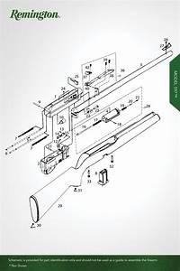 Model 597 U2122    597 Vtr U2122 - Rimfire Rifles - Remington U00ae