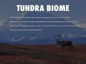 Tundra Biome By Jacob Chadderdon