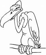 Buzzard Coloring Colorare Disegni Printable Disegno Urubu Colouring Avvoltoio Cartoon Colorir Ausmalbilder Geier Birds Dal Ma Drawing Voador Pagine Lusso sketch template