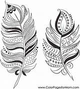 Feathers Coloring Feather Adult Duster Colouring Printable Drawing Mandala Adults Dream Catcher Template Mom sketch template