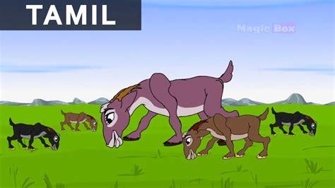 clever  goat jataka tales  tamil animation