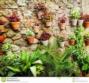 Mur De Fleurs : mur en pierre de maison avec des fleurs photo stock image 50570904 ~ Farleysfitness.com Idées de Décoration
