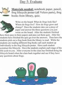 Third Of Life : 29 best frog life cycle unit images on pinterest frog ~ A.2002-acura-tl-radio.info Haus und Dekorationen
