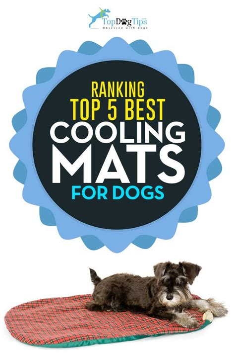 Best Doormats For Dogs by Best 25 Cooling Mat Ideas On Cooling Pad