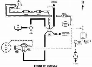 Wiring Diagram  7 1998 Ford Ranger Vacuum Diagram