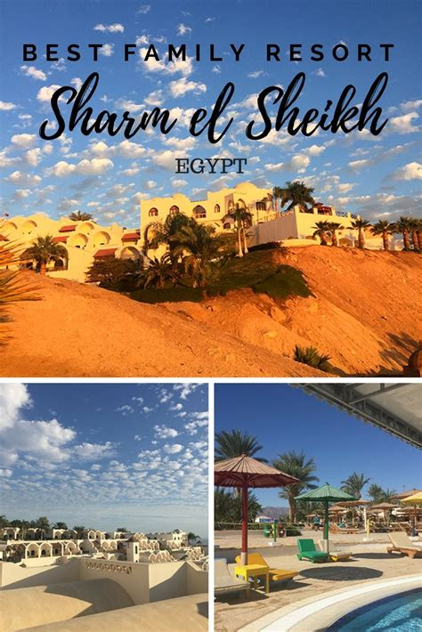 Best Resort In Sharm El Sheikh Movenpick Sharm El Sheikh Naama Bay Review Carpe Diem