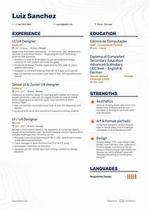 Technical Resume Skills Ui Designer Resume Examples Pro Tips Featured Enhancv