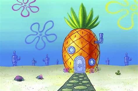 answer  spongebob questions