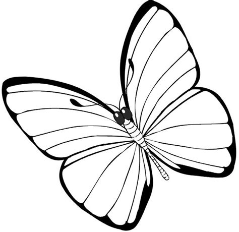 Coloring Butterfly by Butterfly Coloring Pages Coloringpagesabc
