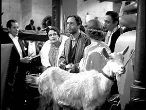 My Man Godfrey (1936) – Gregory La Cava | The Mind Reels